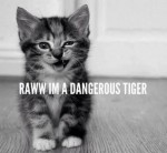 raww_i_m_a_dangerous_tiger_by_farcry3privateer-d6222a6.jpg